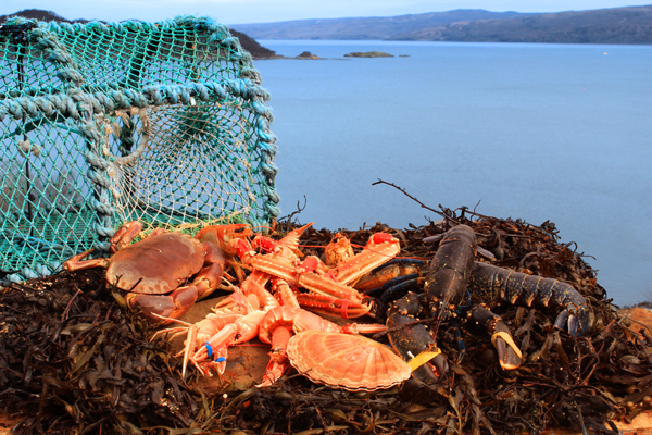 shellfish_on_loch_600